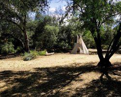 Indian-Camp_002
