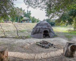 Camp_024