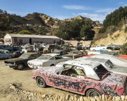 car-yard_0029