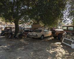 car-yard_0046