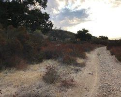 Ranch_045