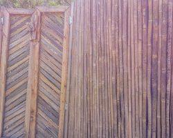 shower-gate