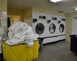 laundry_employee_0004