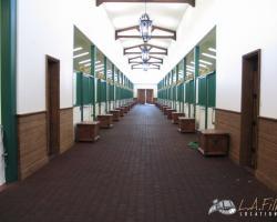Interior_Main_Barn (16)