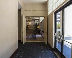Trillium_001