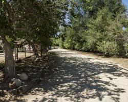 entrance-pathways_0029