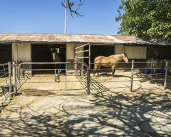 stables-corrals_0003