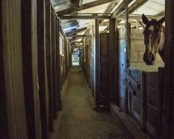 stables-corrals_0011