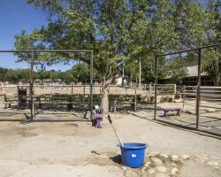 stables-corrals_0017