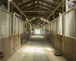 stables-corrals_0019