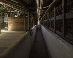 stables-corrals_0025