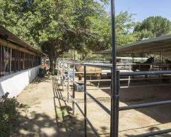 stables-corrals_0029