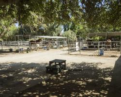 stables-corrals_0031