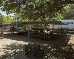 stables-corrals_0036