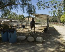 stables-corrals_0038