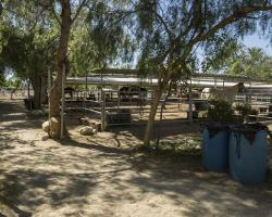 stables-corrals_0039