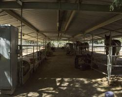 stables-corrals_0040