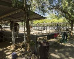 stables-corrals_0041