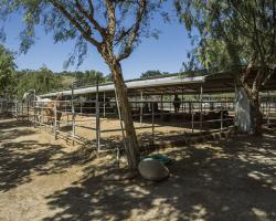 stables-corrals_0043