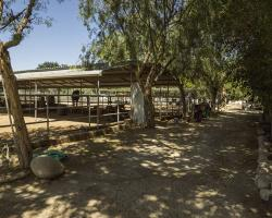 stables-corrals_0044