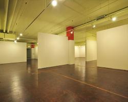 basement_0007