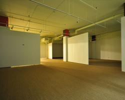 basement_0009