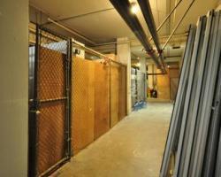 basement_0015