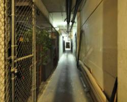 basement_0019