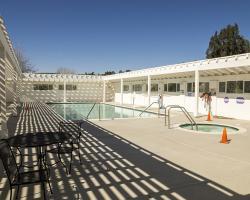 pool-auditorium_0006