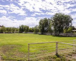 grassfield_0001