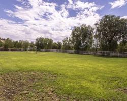 grassfield_0025
