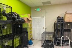 Pet-Store-Image-010
