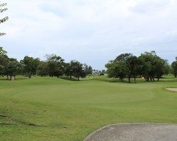 CH Golf Horse_009