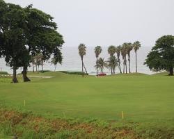 CH Golf Horse_014