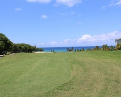 CH Golf Horse_015
