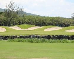 CH Golf Horse_021
