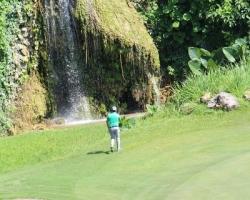 CH Golf Horse_022
