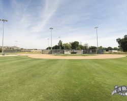 baseballfields_010