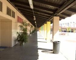 elementary_exterior_0039