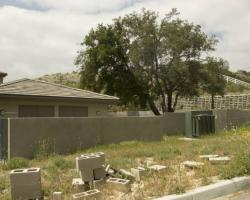 backyard_0003