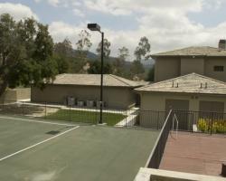 backyard_0012