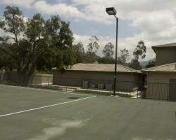 backyard_0025