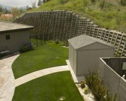 backyard_0043