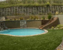 backyard_0077