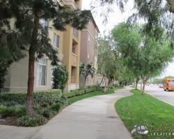 exterior (50)