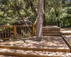 treehouse_0039