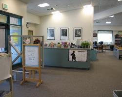 Interior_Library (18)