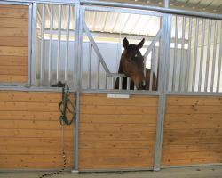 stables_0012